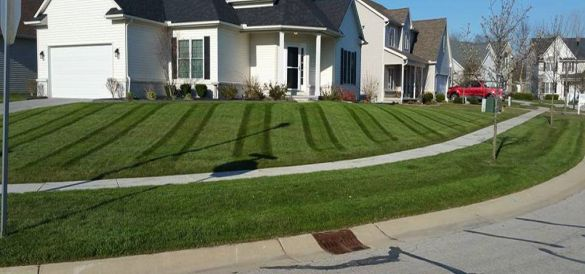 Lawn Care Grass Cutting Oak Creek Franklin Hales